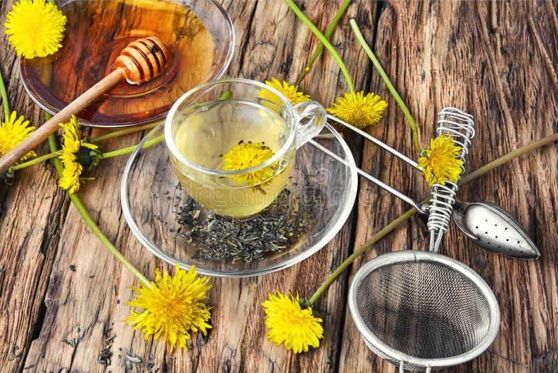 Tea with honey dandelion stock photography
