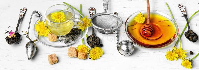 Tea with honey dandelion stock photos