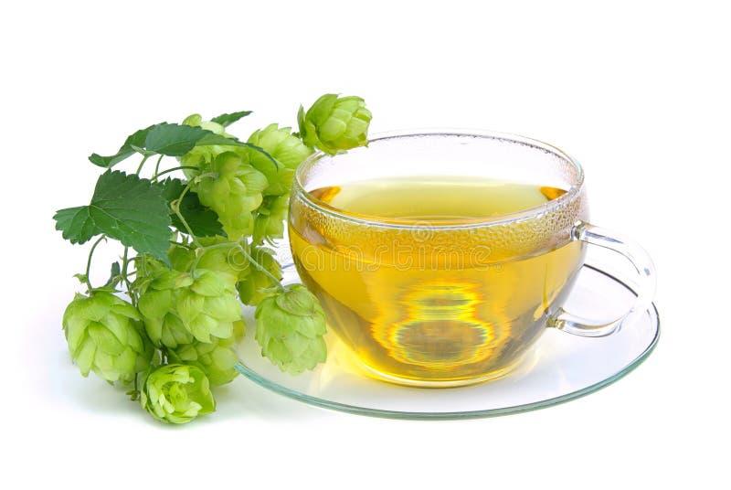 Tea Hop 01 Stock Photos