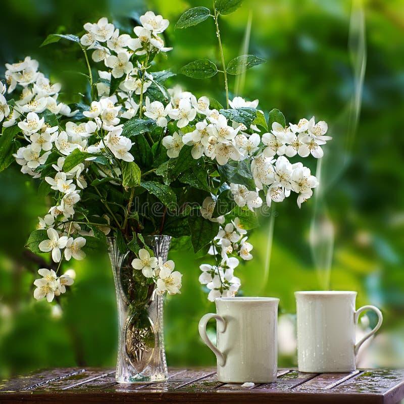 Tea with the jasmine royalty free stock photo
