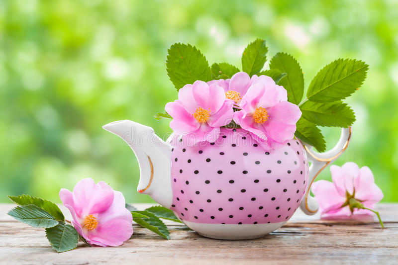 Tea kettle with bouquet of pink wild roses. Wedding or birthday still life royalty free stock photo