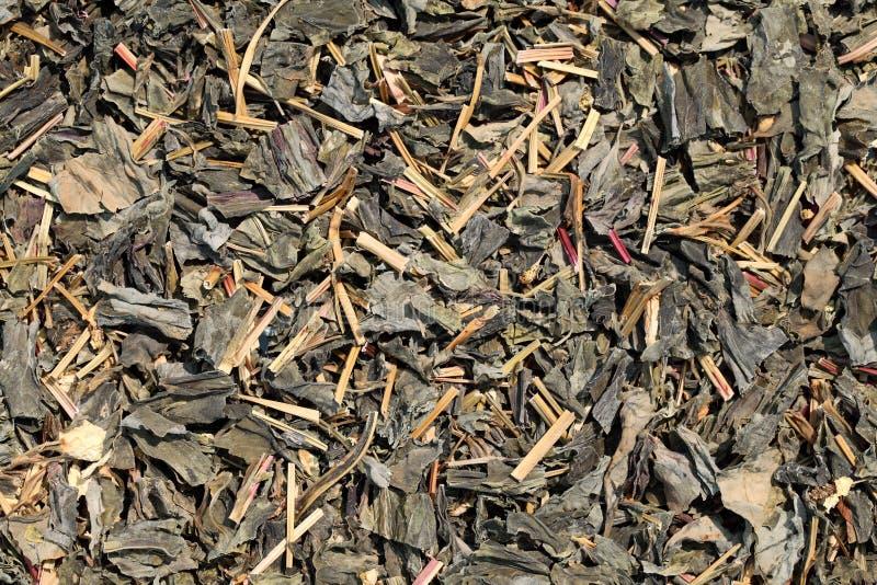 Download Tea leaves stock photo. Image of background, botany, macro - 25233928
