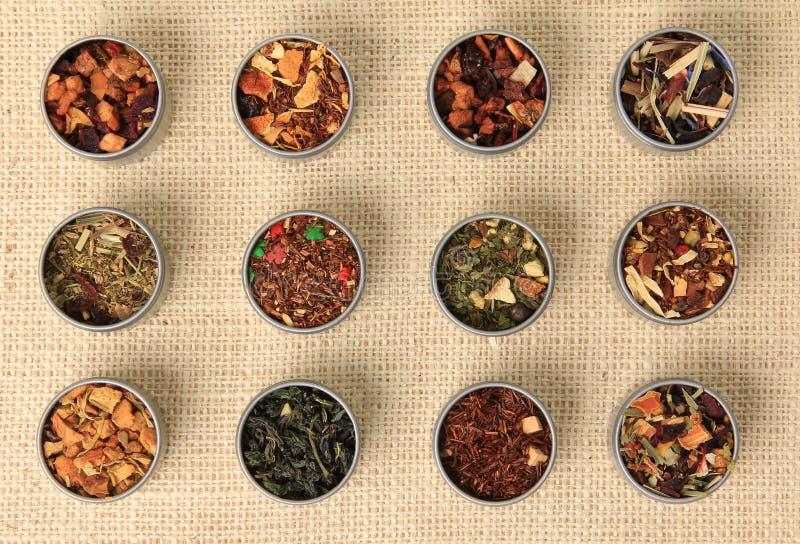 Tea leaves. Different varieties stock image