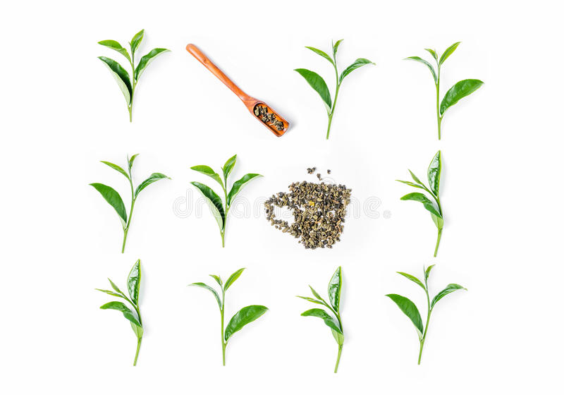 Tea leaves and wooden scoop on white background. vector illustration