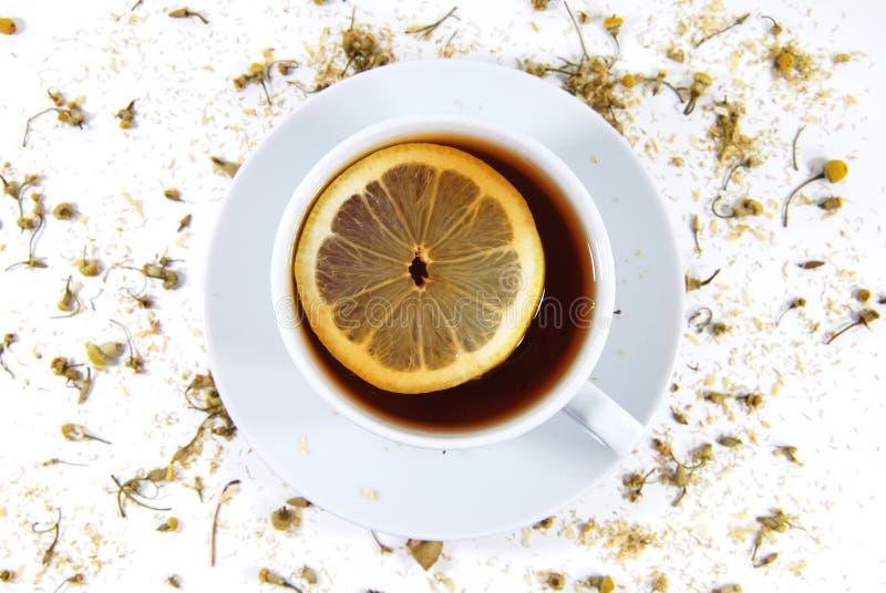 Tea with lemon royalty free stock image
