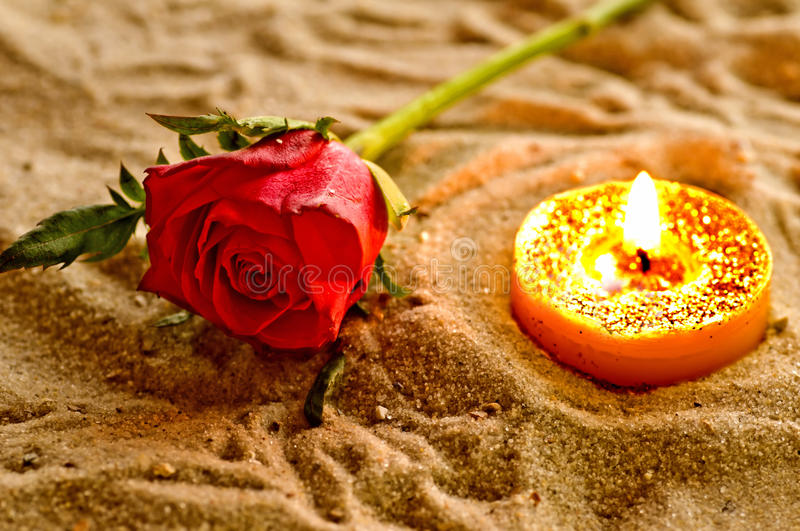 Download Tea light with rose stock photo. Image of botanical, evening - 28716772