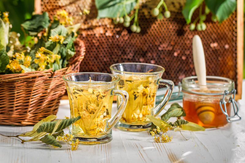 Tea with lime and honey served in the garden royalty free stock image