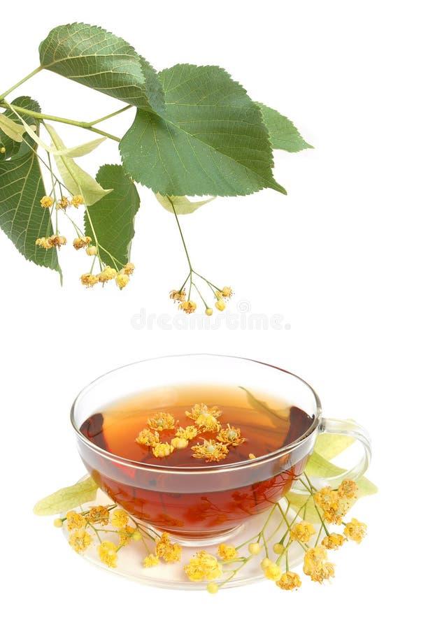 Tea med lindenblommor arkivbild