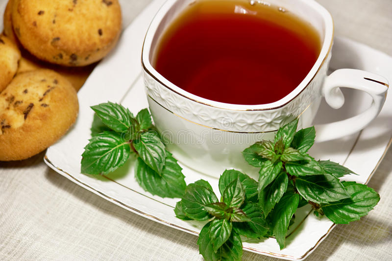 Tea With Mint Royalty Free Stock Image