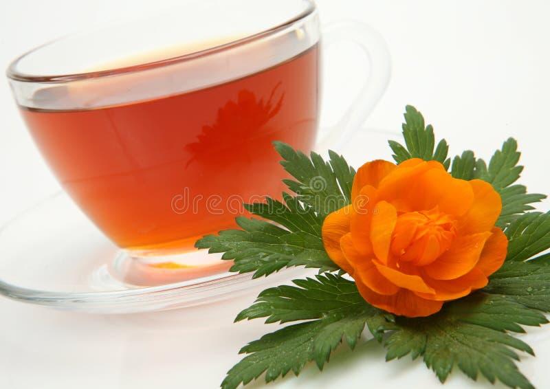 Download Tea In A Mug Stock Image - Image: 23663771