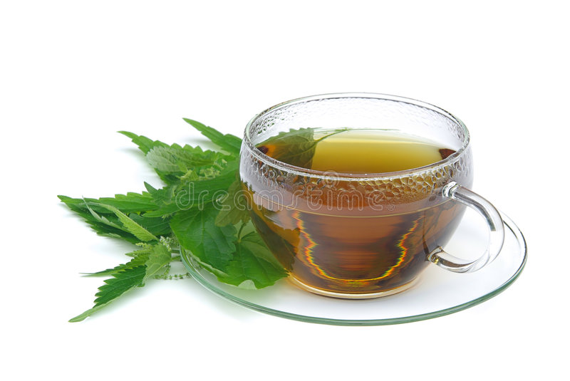 Download Tea nettle 02 stock image. Image of drink, white, closeup - 6121551