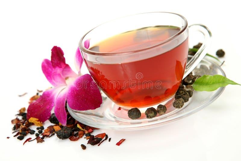 Tea och rosa orchid arkivfoto