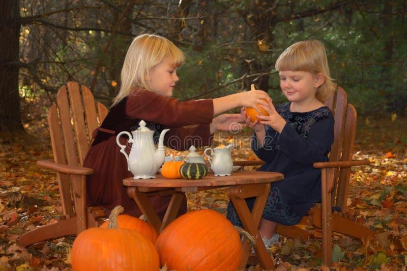 Tea party in autumn. Two girls having fun with an autumn tea party outdoors royalty free stock photos