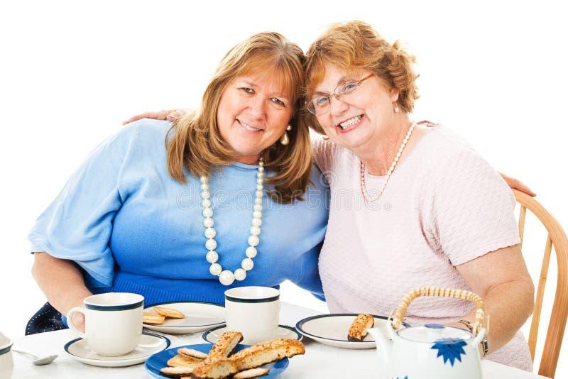 Tea party dos melhores amigos imagens de stock royalty free