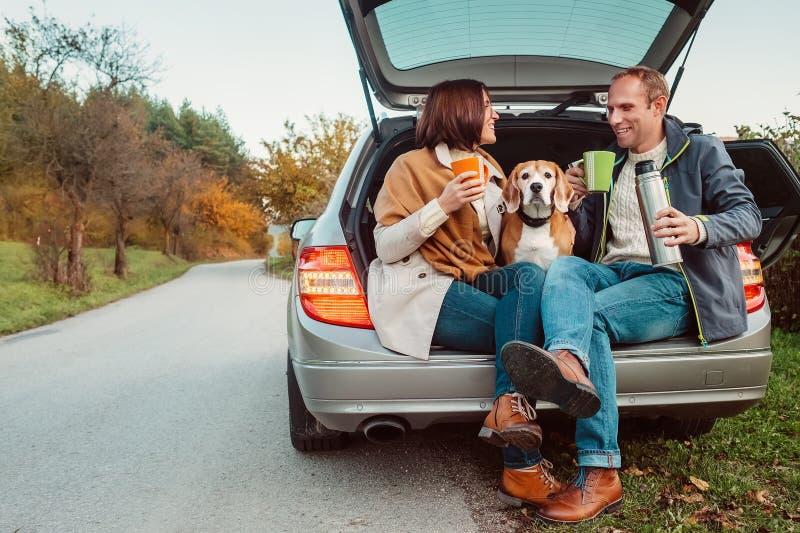 Tea party no caminhão do carro - o par loving com cão senta-se no truc do carro foto de stock royalty free
