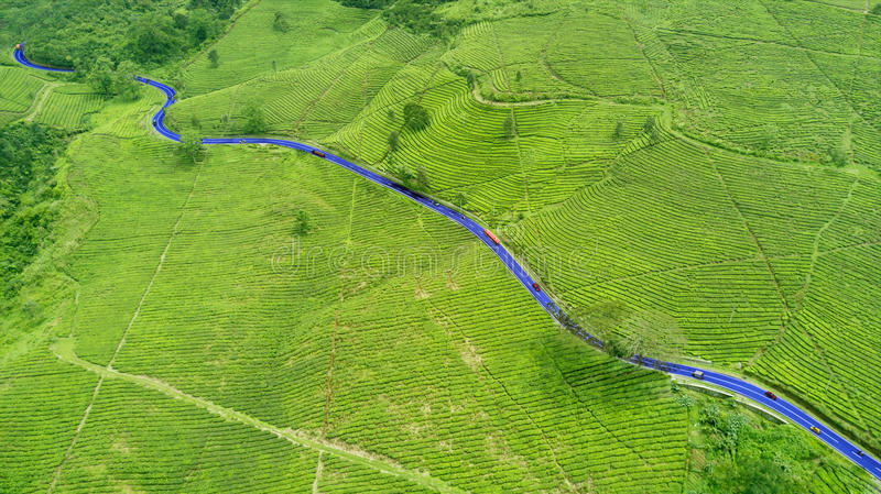 Tea plantation and highway. Aerial view of tea plantation with highway and vehicle. Shot at Subang highlands, Indonesia stock image