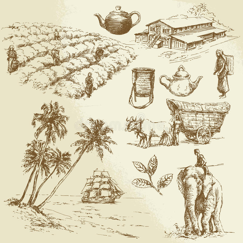 Tea plantations stock illustration