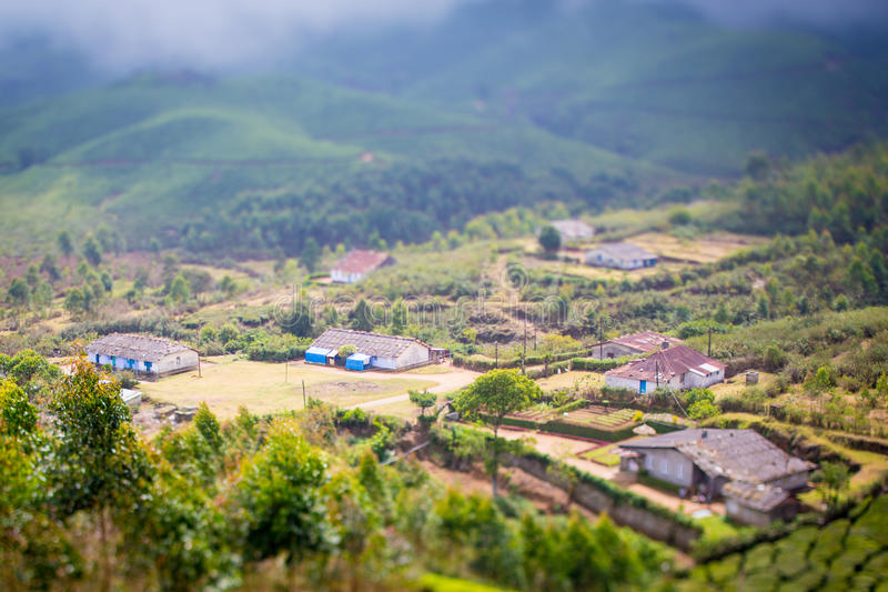 Download Houses In The Middle Of A Tea Plantation Stock Image - Image: 29949255