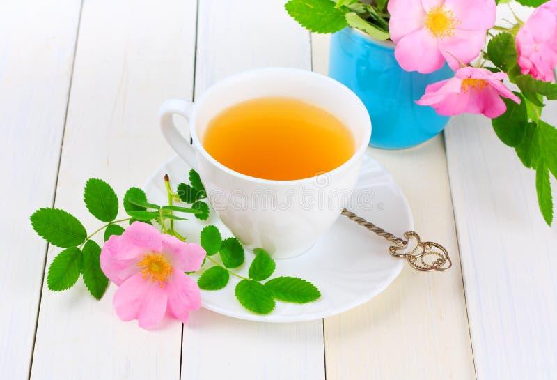 Tea with rose hip stock image
