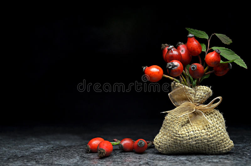 Tea with rose hips royalty free stock image