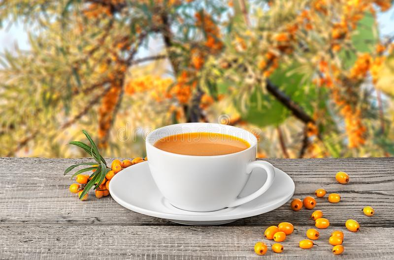 Tea of seabuckthorn berries on wooden table royalty free stock photo