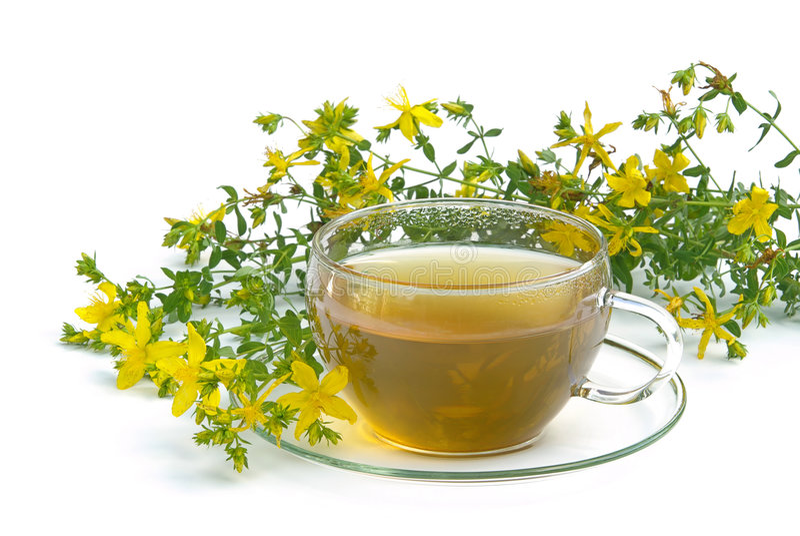 Tea St Johns wort 03. Tisane, tea St Johns wort royalty free stock photos