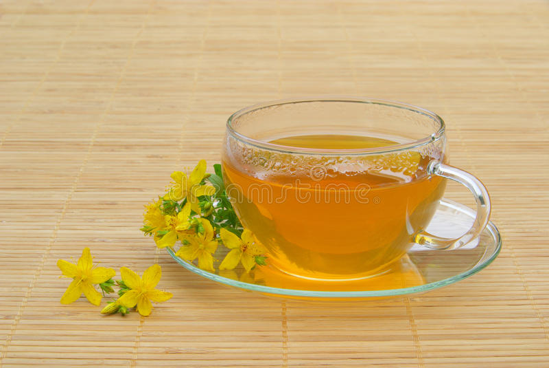 Tea St Johns wort. Herbal tea from St Johns wort royalty free stock image