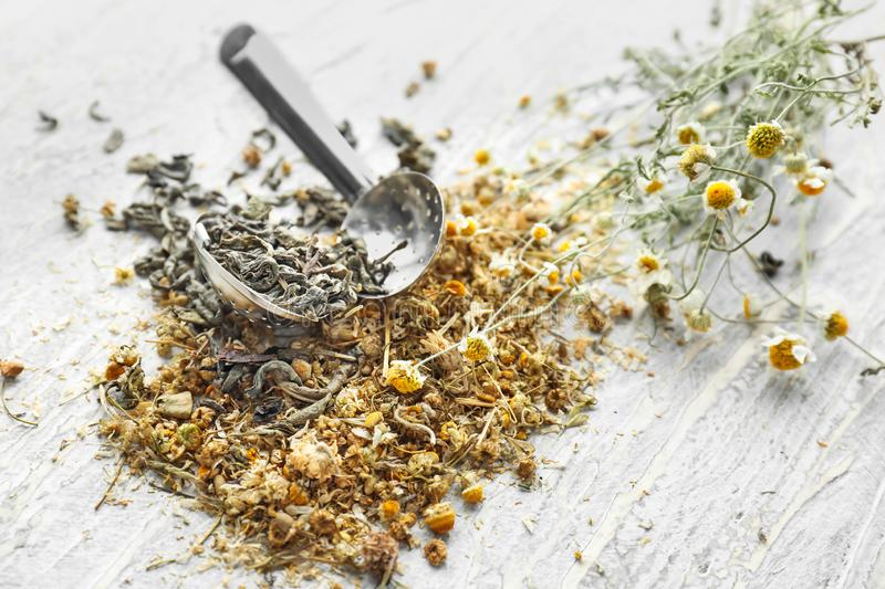 Tea strainer with dried chamomile flowers on wooden table stock photography