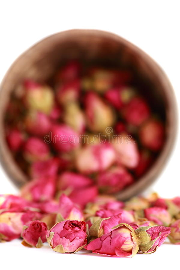 Download Tea from a tea-rose buds. stock image. Image of lifestyle - 18280621