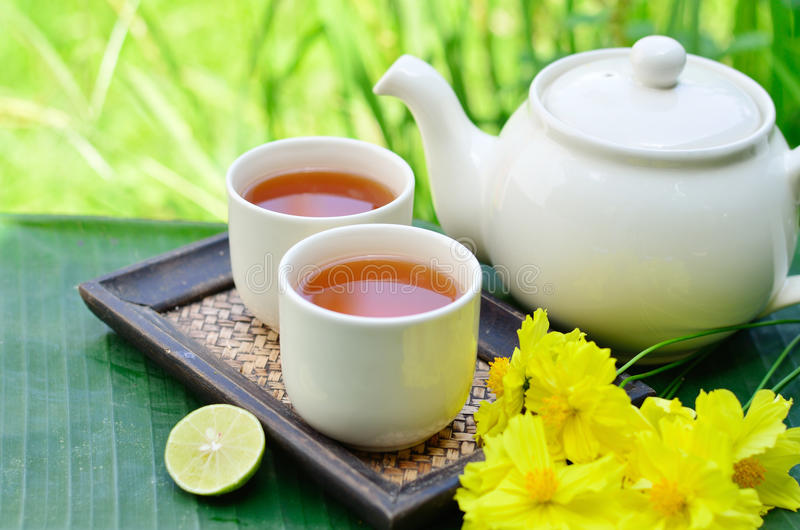 Tea whit yellow flower. Chinese lemon tea in the morning whit yellow flowers and green background stock photography