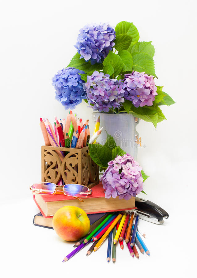 Teacher Day.Bouquet Of Flowers Hydrangeas And Scho Royalty Free Stock Images