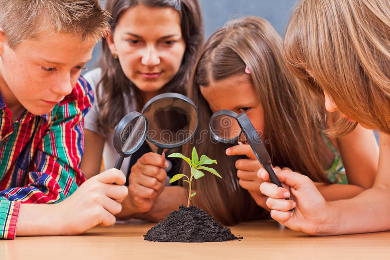 Teacher and pupils in biology class stock photography