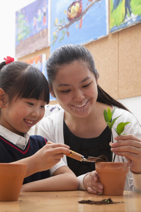 Teacher and schoolgirl planting plants into flowerpots stock image