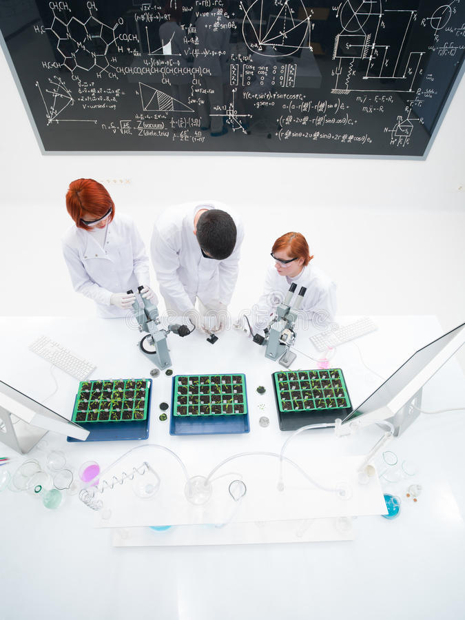 Download Teacher And Students In Laboratory Royalty Free Stock Photo - Image: 31257755