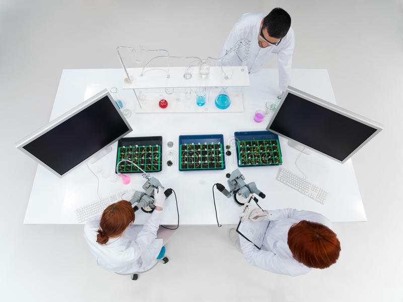 Teacher and students in a laboratory royalty free stock images