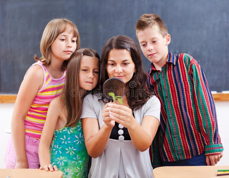 Teacher and students look at plant