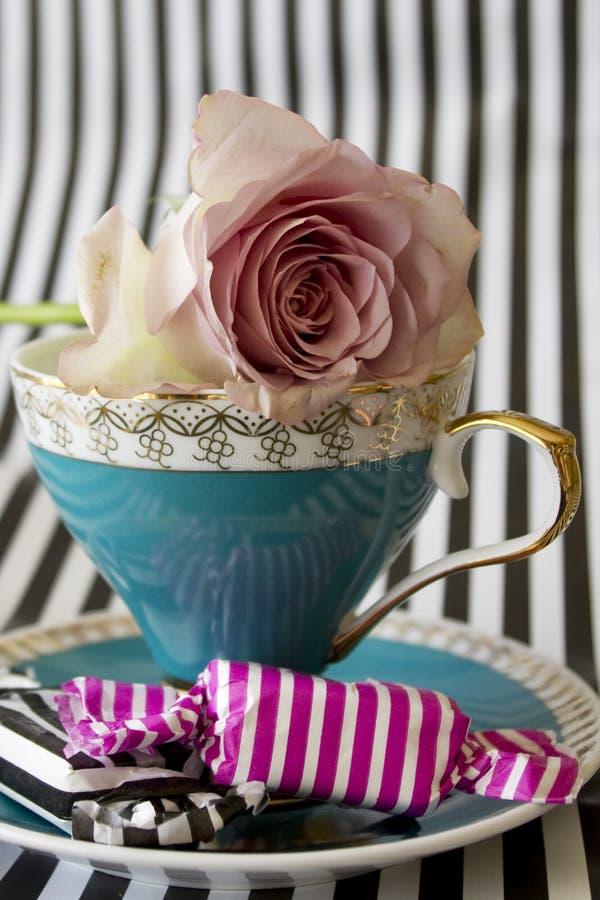 teacup zdjęcie stock