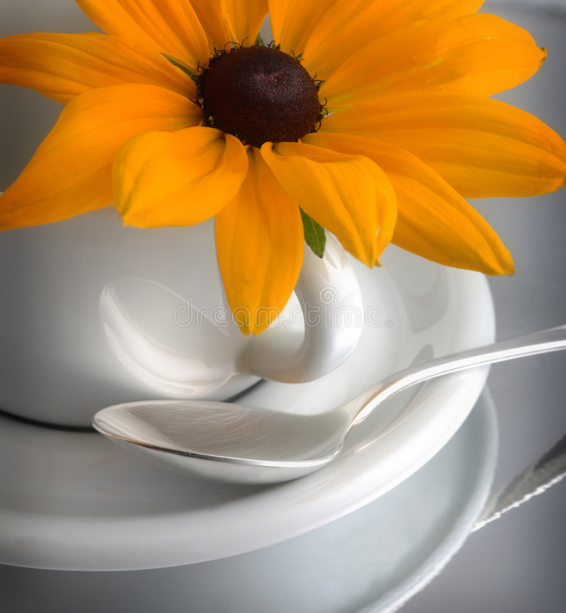 Teacup, daisy and spoon. A closeup of a white coffee cup and saucer, decorated with a yellow daisy on its handle. A silver spoon has been placed on the saucer royalty free stock photo