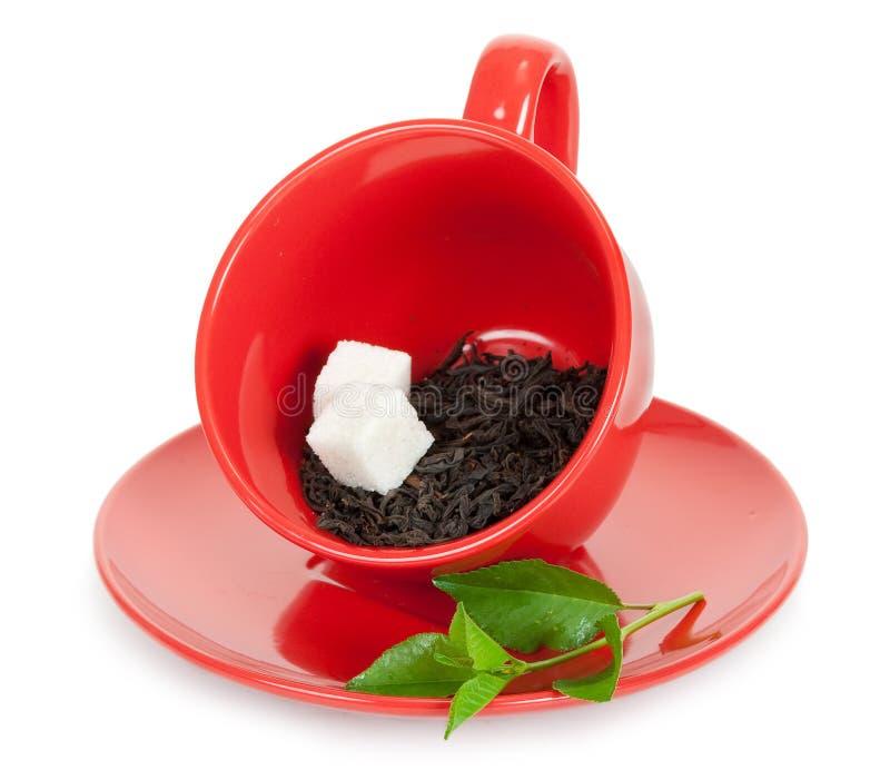 Teacup med svart tea och skivor av socker royaltyfri fotografi