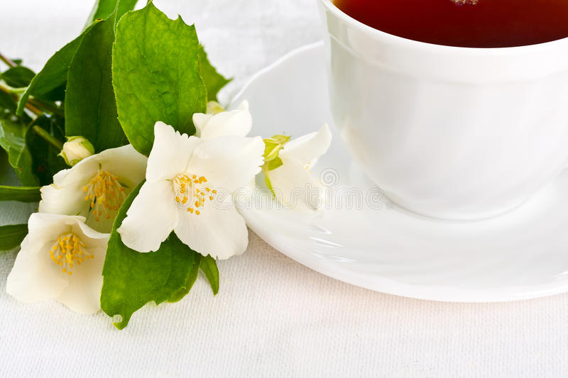Download Teacup on white napkin. stock photo. Image of bowl, floral - 24723646