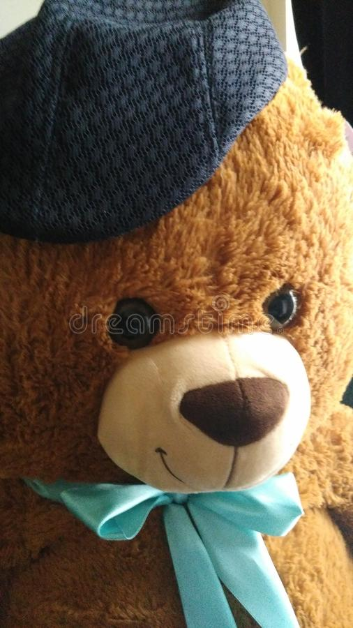 Teady björn royaltyfria foton