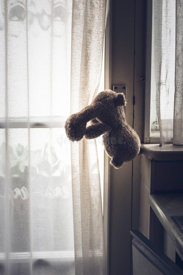 Teady björn som haning från dörrhandtaget arkivfoto