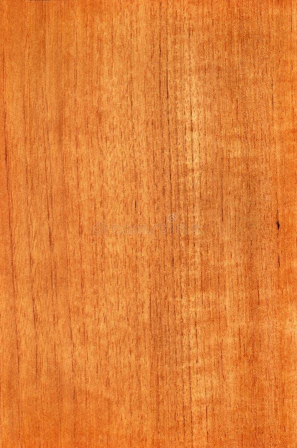 Teak (houten textuur) stock afbeelding