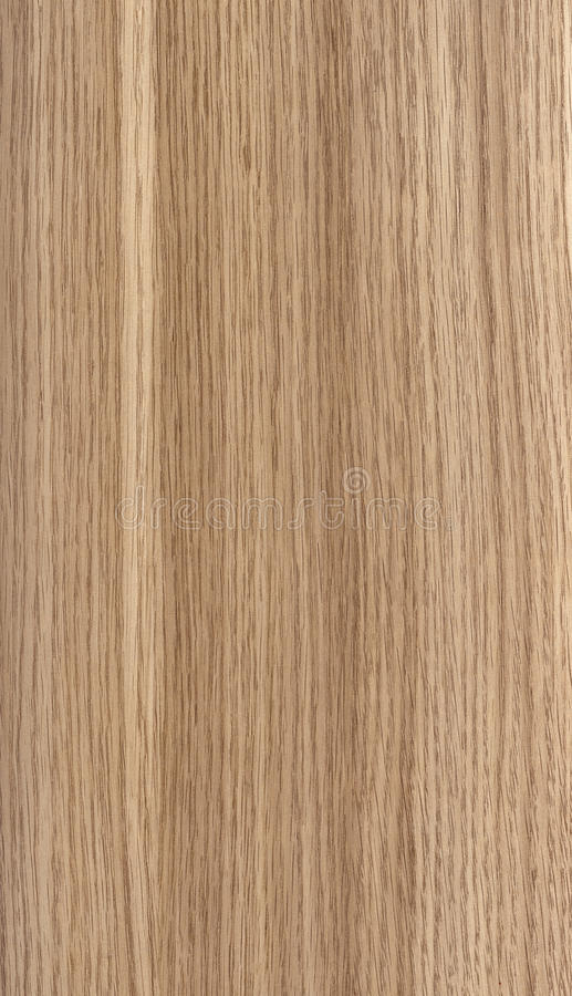 Teak Wood Texture. (high Resolution Scanned Image royalty free stock images