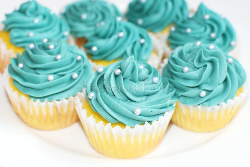 Teal Cupcakes royalty-vrije stock foto