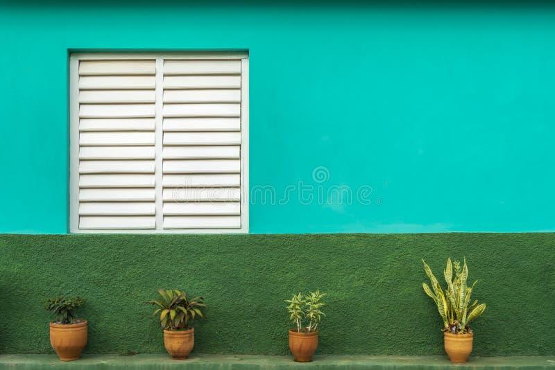 Teal et maison verte, l'UNESCO, Vinales, Pinar del Rio Province, Cuba image libre de droits