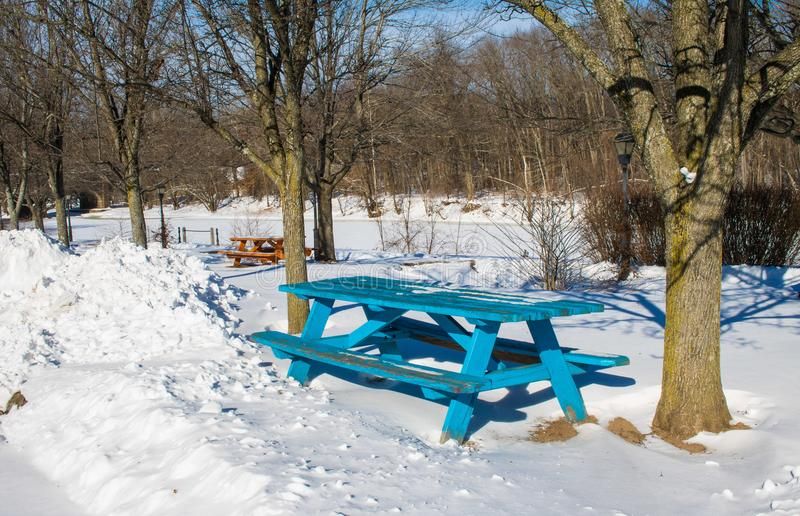 Teal picnic table in the snow stock image