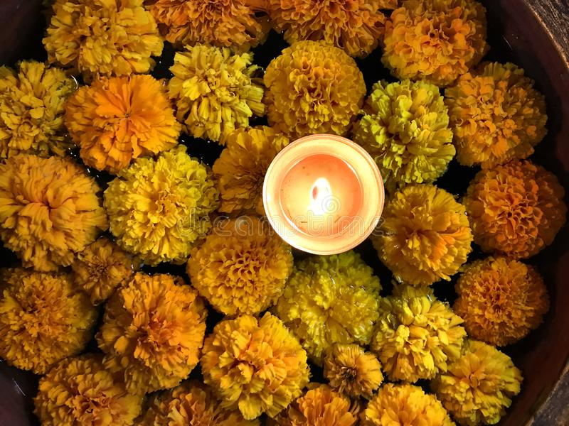 Tealight Candle Diya With Marigold Flower Floating in Water Inside Large Bowl. Happy Diwali - Hindu festival of lights royalty free stock photos