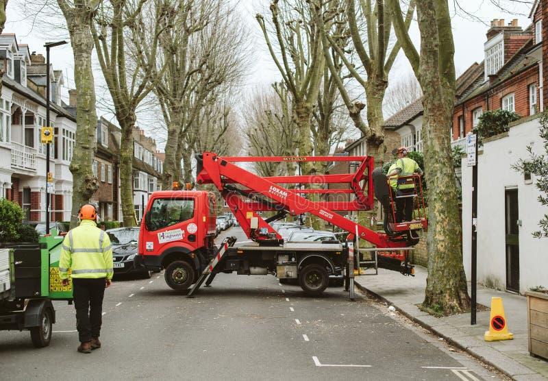 Team a árvore da limpeza que poda na rua de Londres - segurança e s imagens de stock royalty free