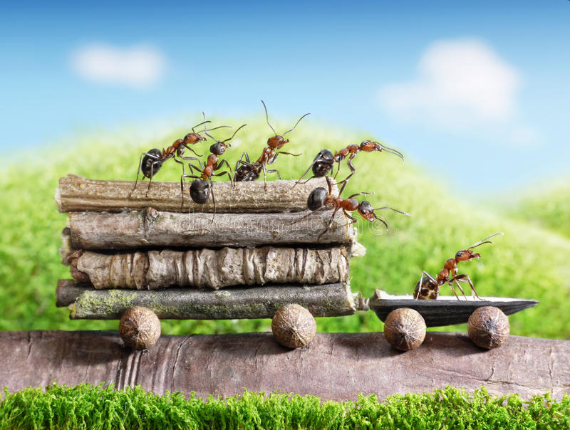 Team of ants carry logs with trail car, teamwork. Team of ants carries logs with trail car, teamwork, ecofriendly transportation stock image